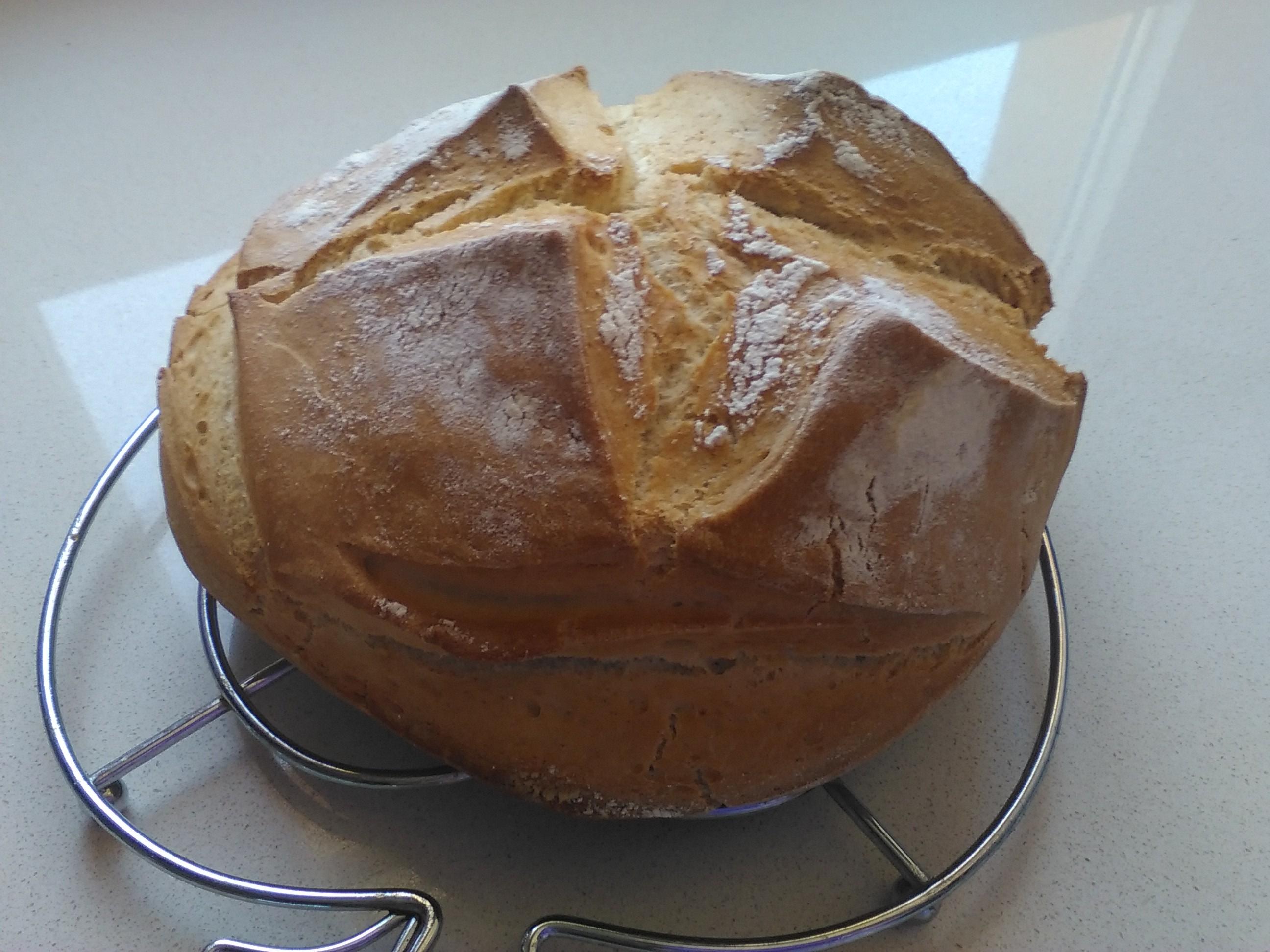 Pan rápido y función de amasado con Thermomix® y TM5.